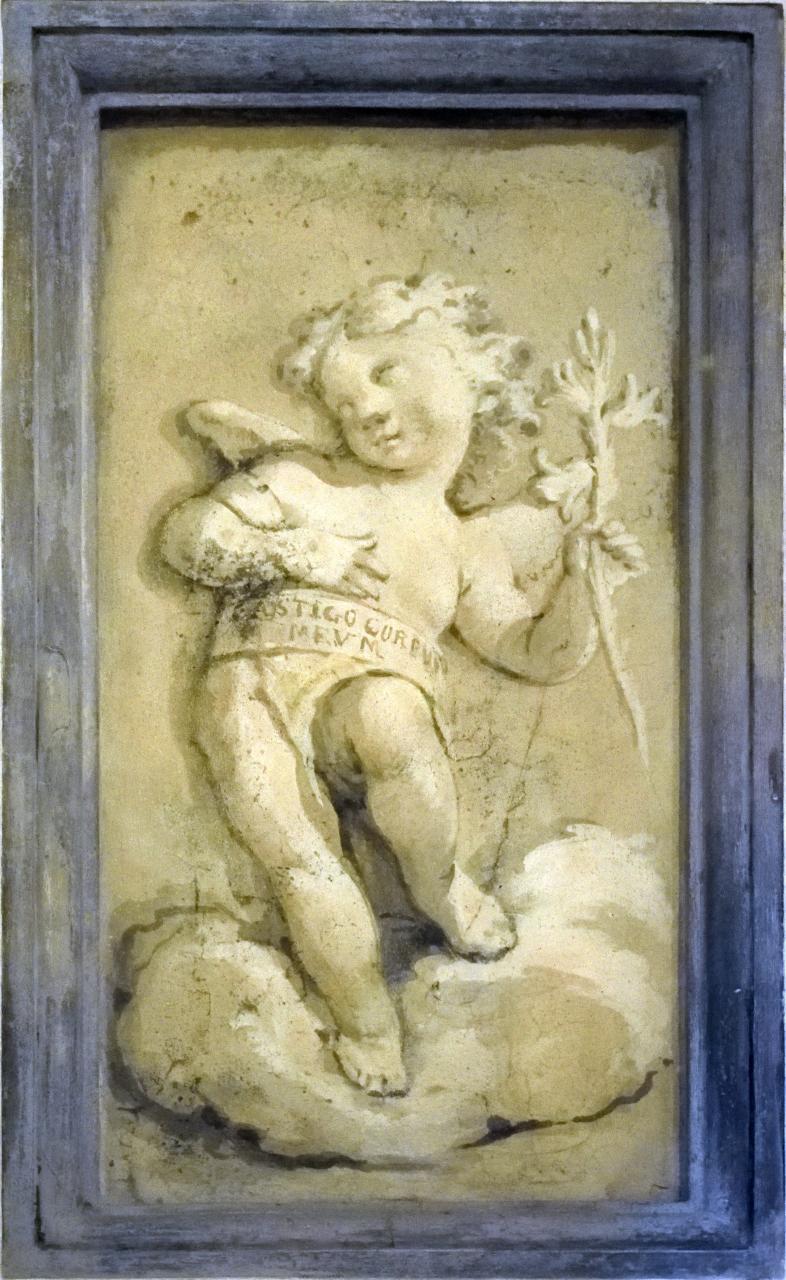 Oratorio di Santa Margherita - Padova - Putti alati - 06